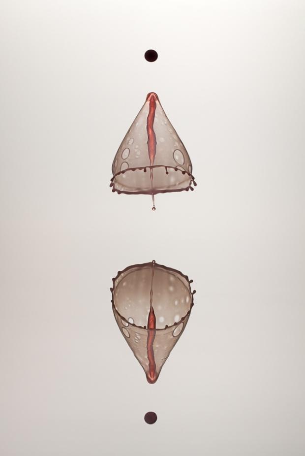 20111117-073007.jpg