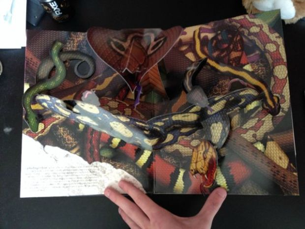 popup_book_explores_the_biggest_phobias_640_04